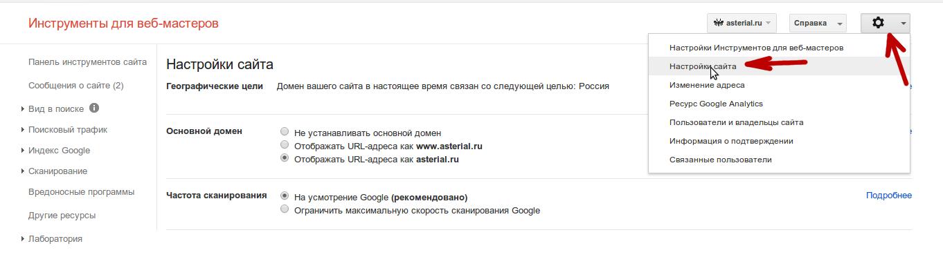 выбираем главное зеркало сайта Гугл